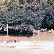 1974slide010.jpg