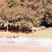 1974slide015.jpg