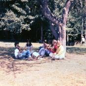 1974slide031.jpg